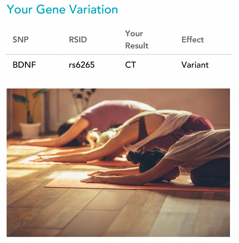 My gene variations for Motivation to Exercise.