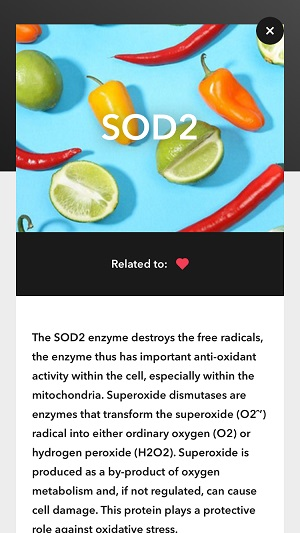 Some information about the SOD2 gene.