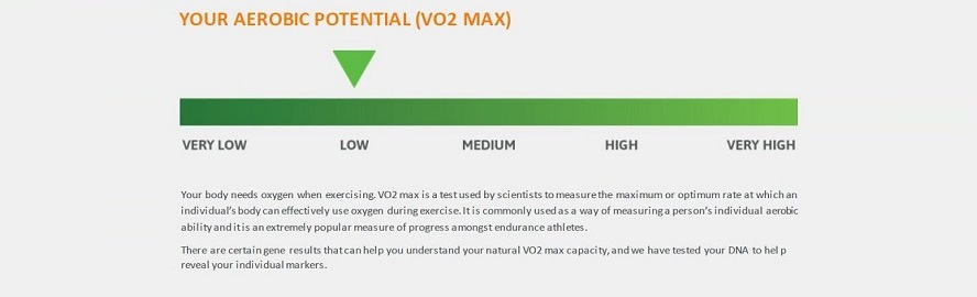 Can a DNA test predict my VO2 max? - DNA Testing Choice