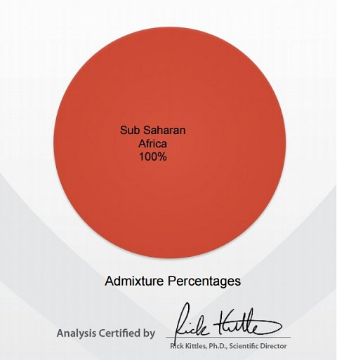 Pie chart showing my Admixture Percentages.