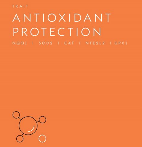 The top of my Antioxidant Protection title page.