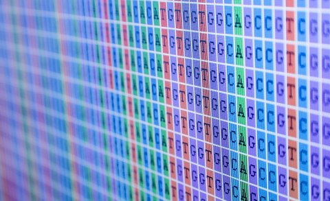 Full Genomes DNA Sequencing Reviews - DNA Testing Choice