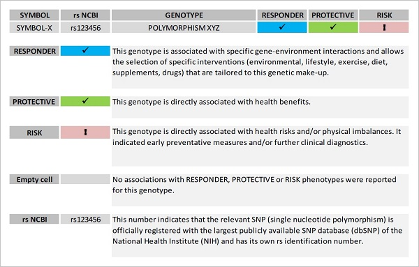 A guide to interpreting the summary table for each gene.