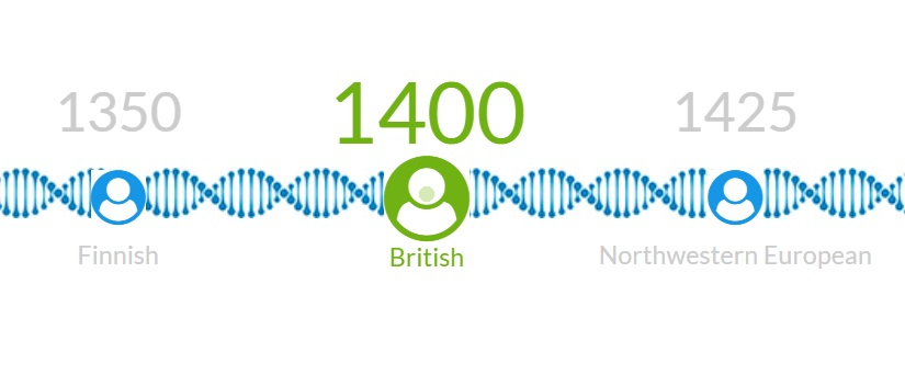 A diagram showing what year my Finnish, British and NW European ancestry dated back to.