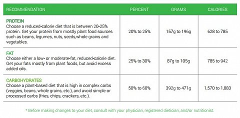 The Food table showing the recommended amounts of each macronutrient.