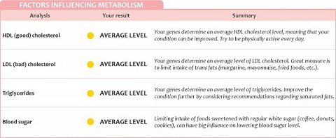 Factors influencing my metabolism.