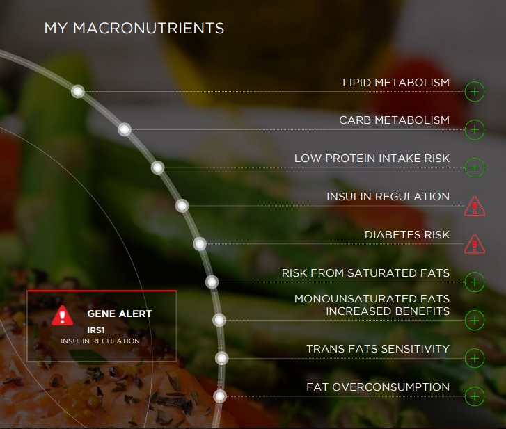 My Macronutrients Summary.