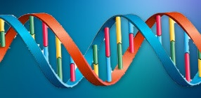 Nutrigenomics DNA Test