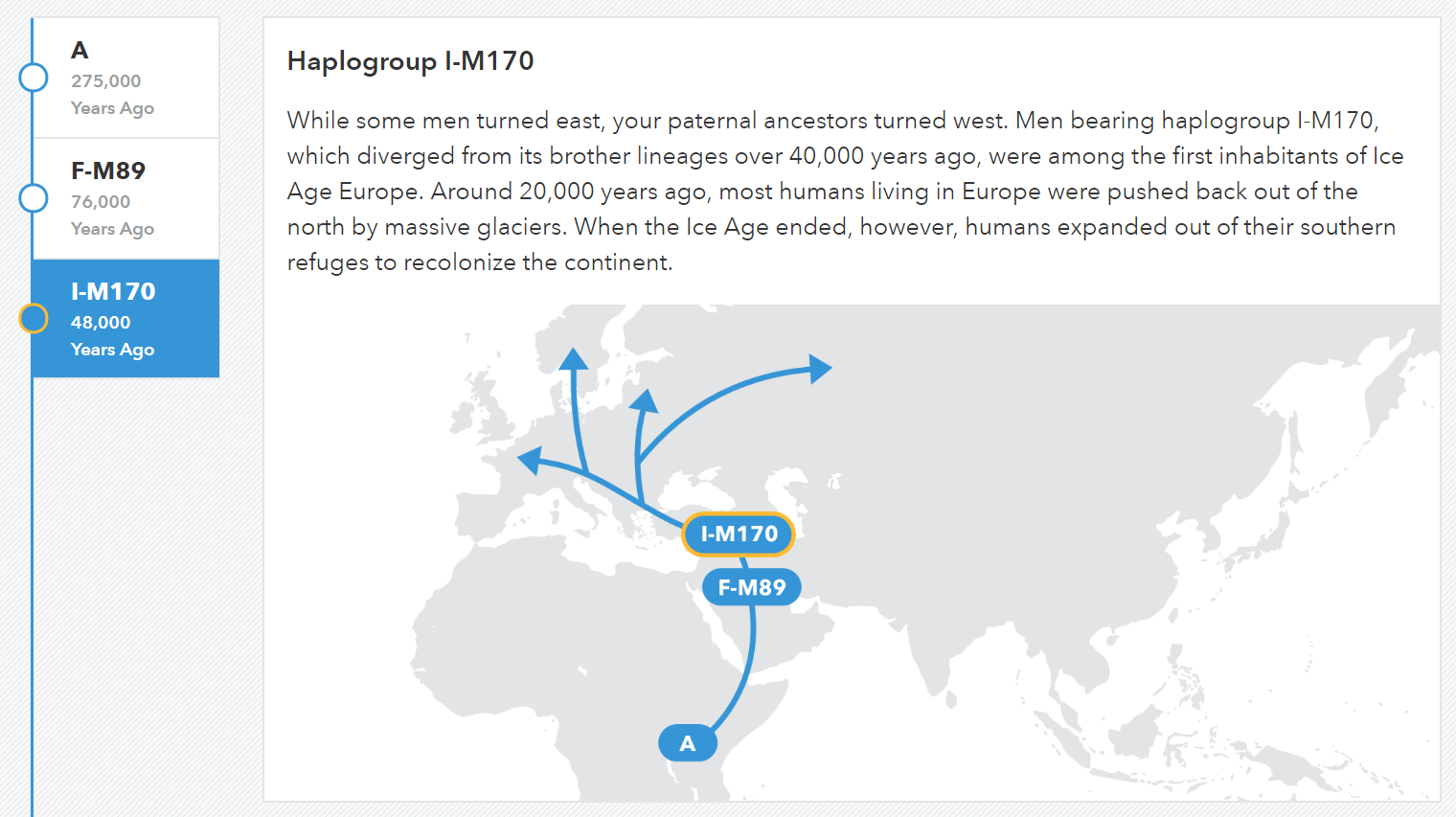 The 23andMe paternal haplogroup map
