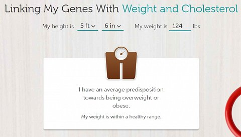 A tool to find out if your weight is in a healthy range.