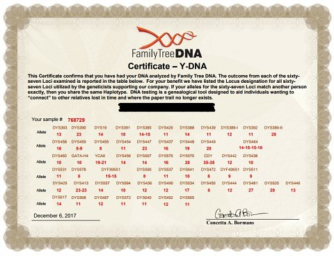 My Y-DNA STR Certificate.